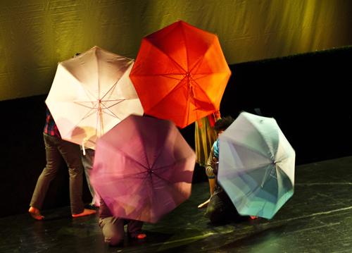 Schirme mit Charme. Foto: Katharina Maier